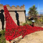 Have you seen the Poppies appearing in Fleetwood?