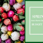 Spring 2018 Annual Budget Summary